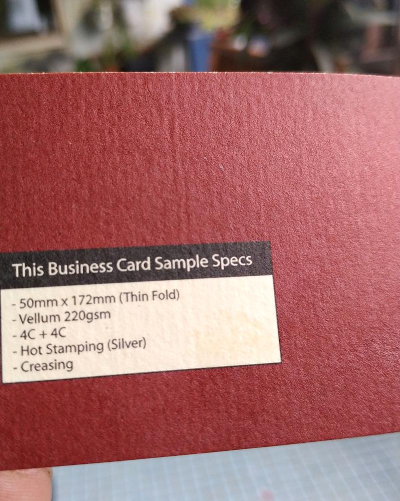 Vellum 220gsm Card