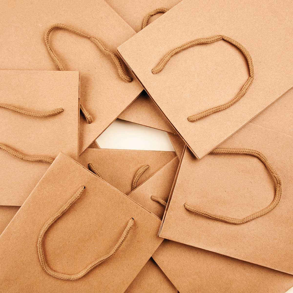 Paper Bag - Craft Paper